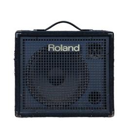 ROLAND KC 100